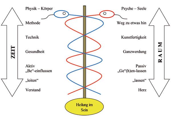 Reiki und Richtungen: Formen, Schwerpunkte, Sprache